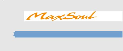 株式会社マックスソウルゴルフ